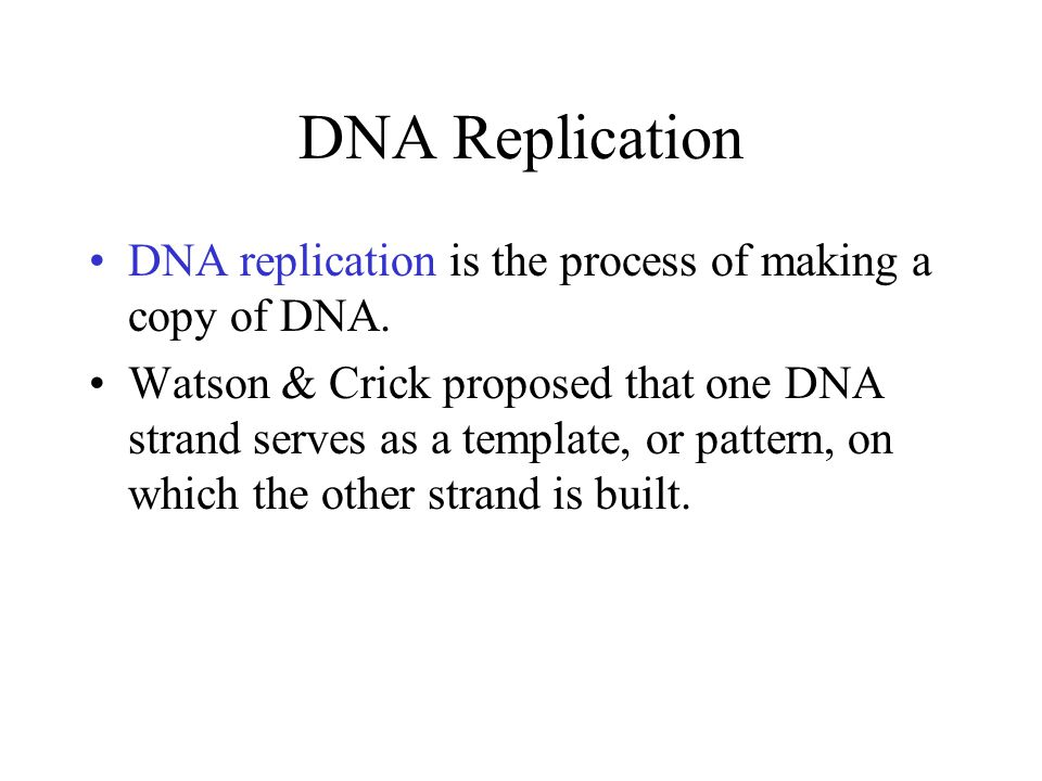 DNA Replication DNA replication is the process of making a copy of DNA.