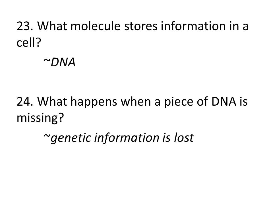 23. What molecule stores information in a cell. ~DNA 24