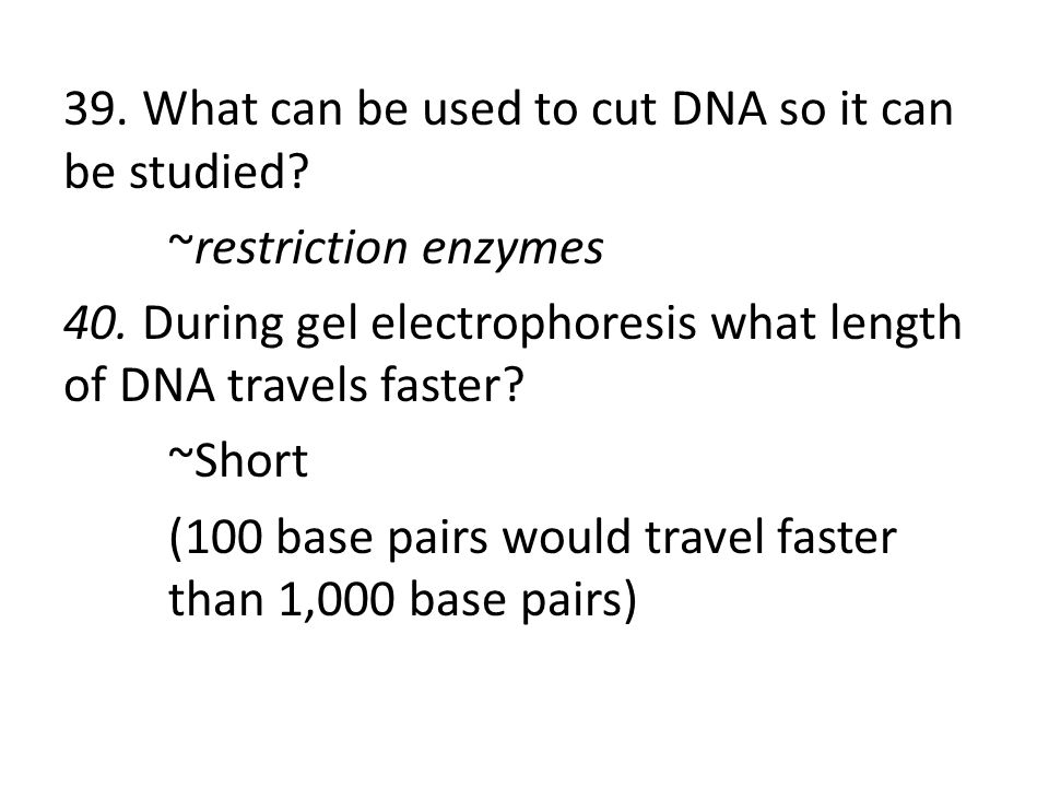 39. What can be used to cut DNA so it can be studied