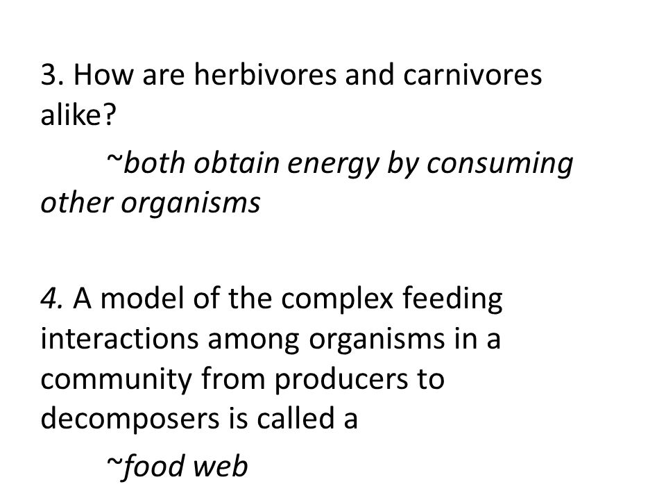 3. How are herbivores and carnivores alike
