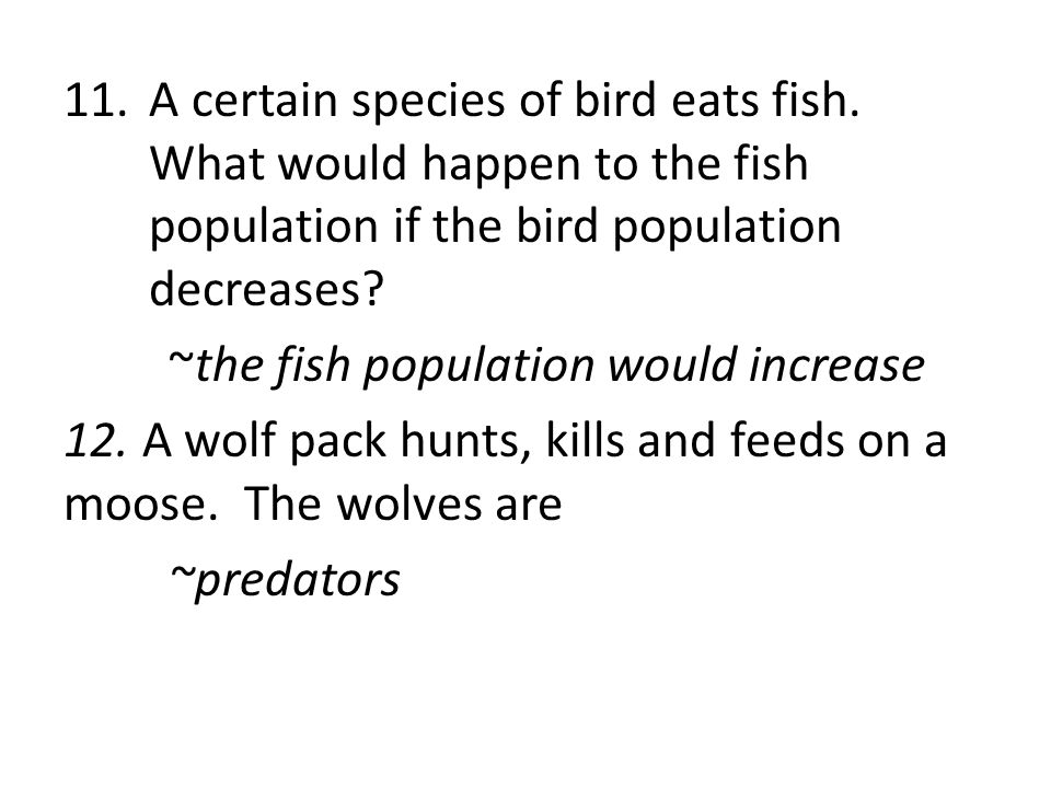 A certain species of bird eats fish