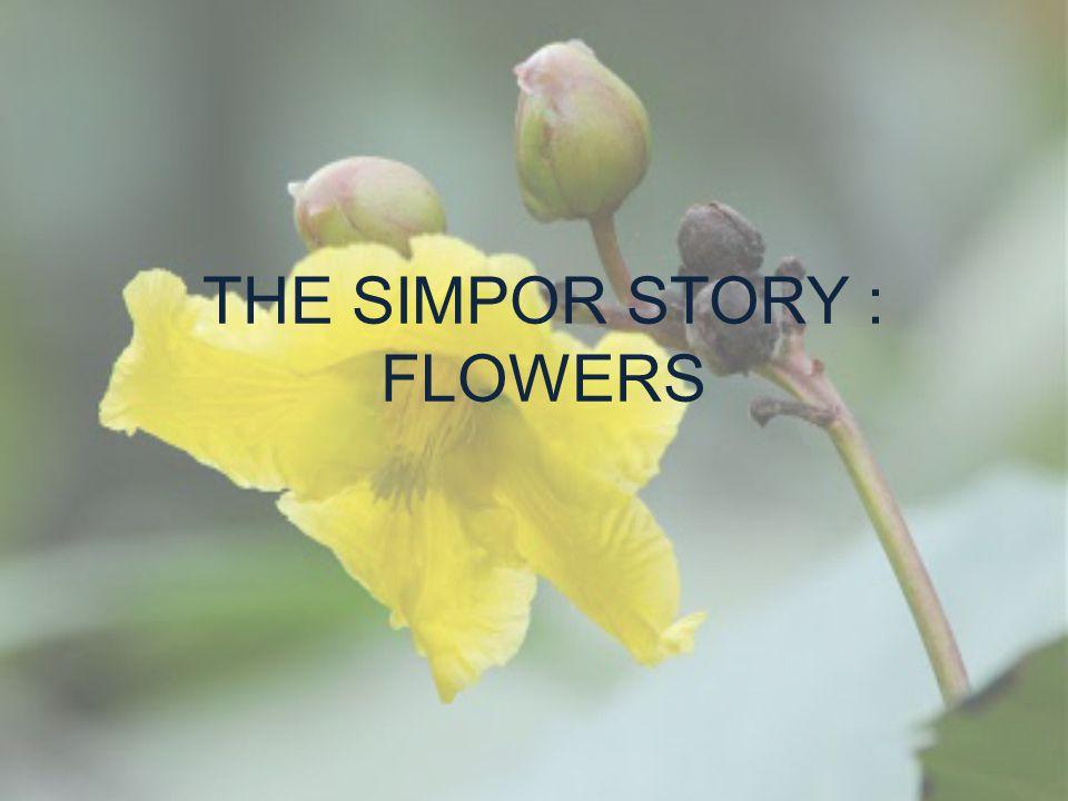 THE SIMPOR STORY : FLOWERS