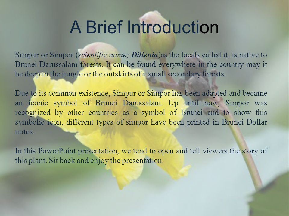 A Brief Introduction