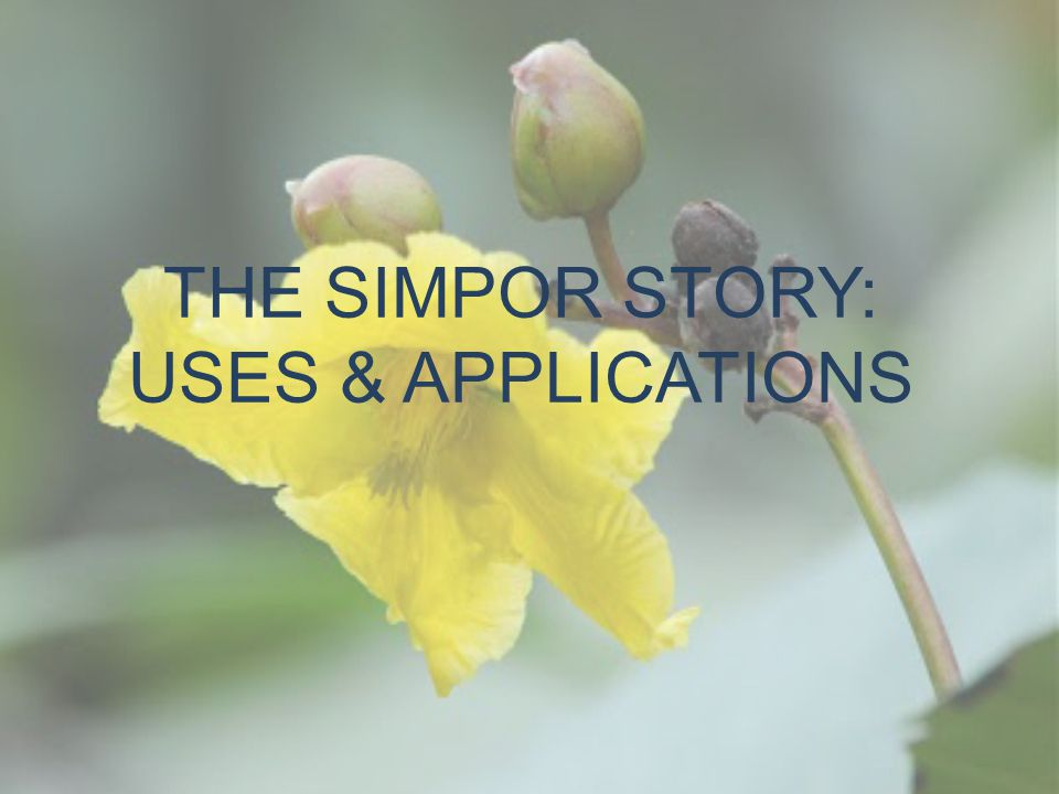 THE SIMPOR STORY: USES & APPLICATIONS