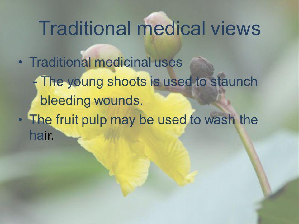 Traditional medical views