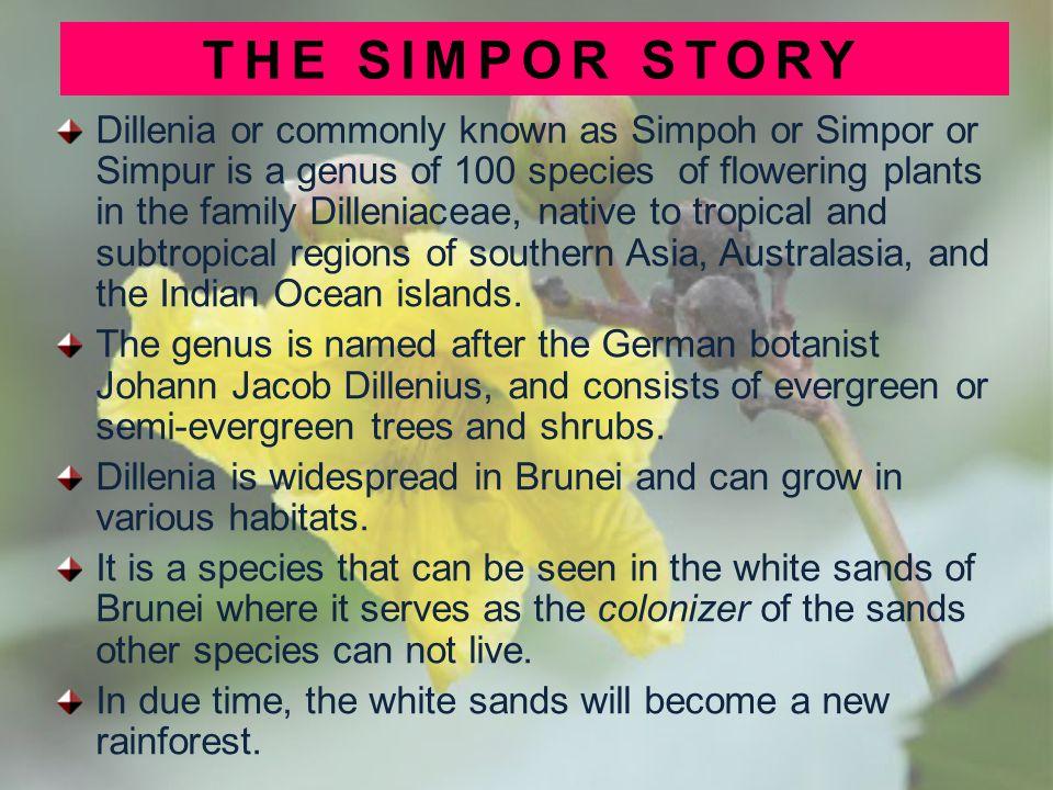 THE SIMPOR STORY