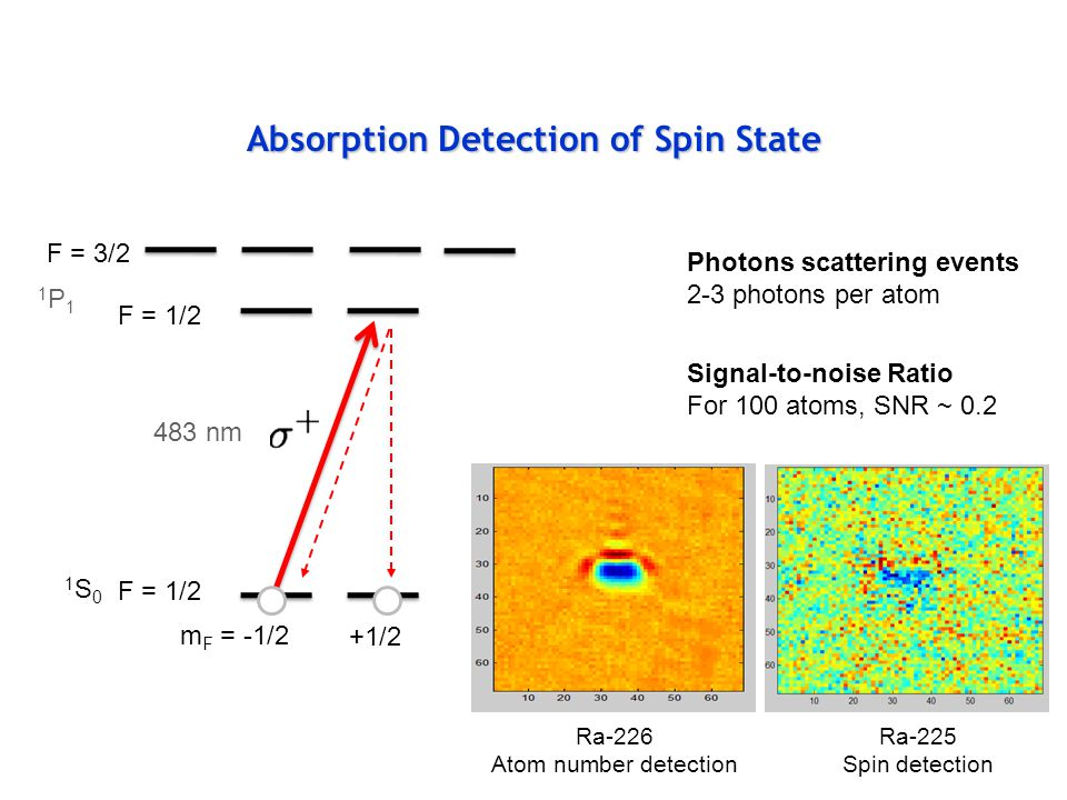 Absorption Detection of Spin State