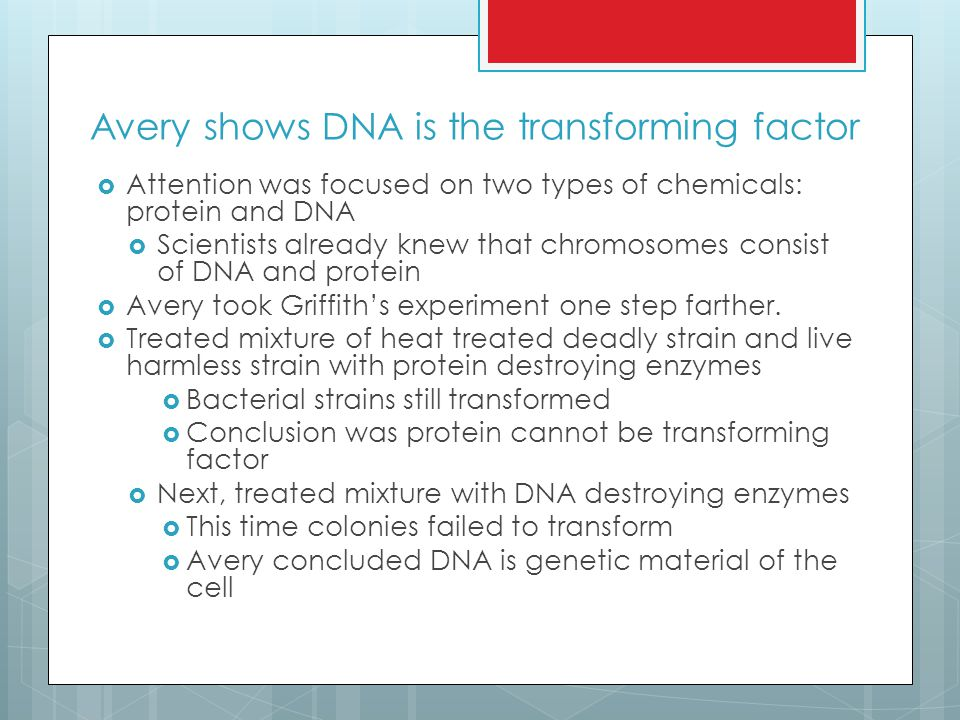 Avery shows DNA is the transforming factor