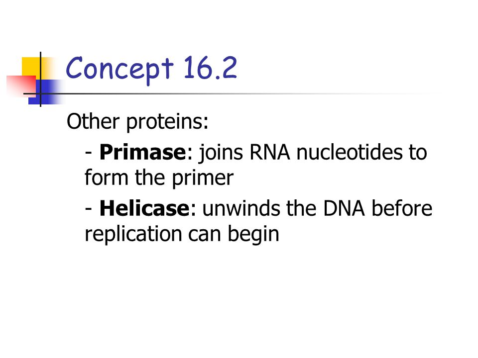 Concept 16.2 Other proteins: