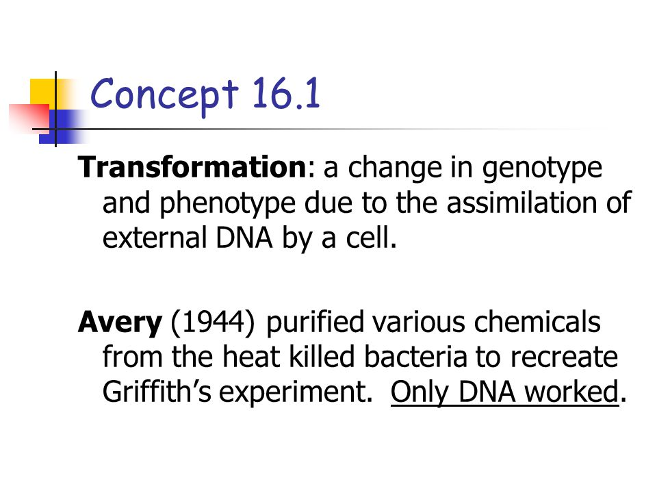 Concept 16.1 Transformation: a change in genotype and phenotype due to the assimilation of external DNA by a cell.