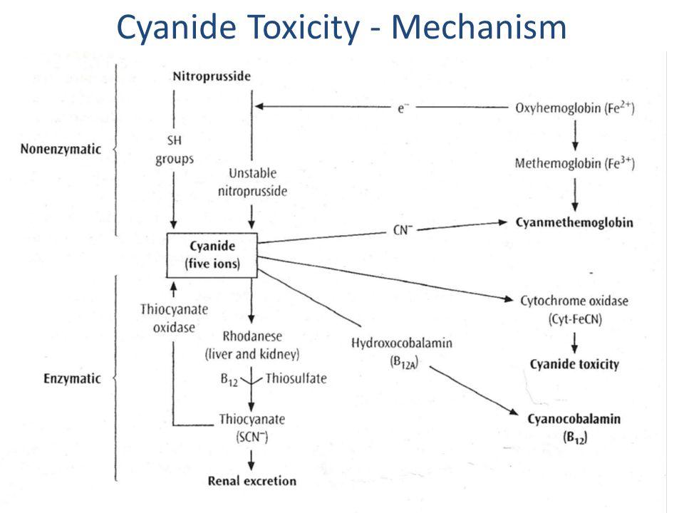 Cyanide Toxicity - Mechanism