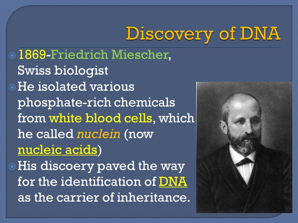 Discovery of DNA 1869-Friedrich Miescher, Swiss biologist