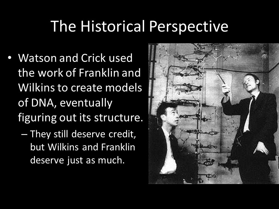 The Historical Perspective