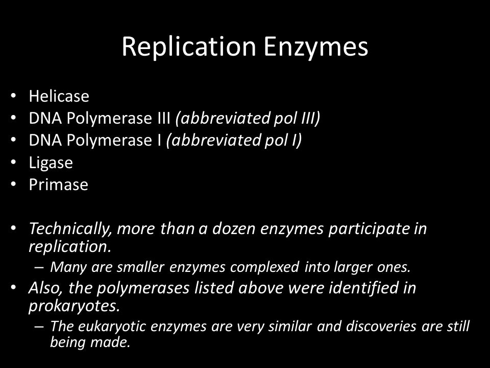 Replication Enzymes Helicase DNA Polymerase III (abbreviated pol III)