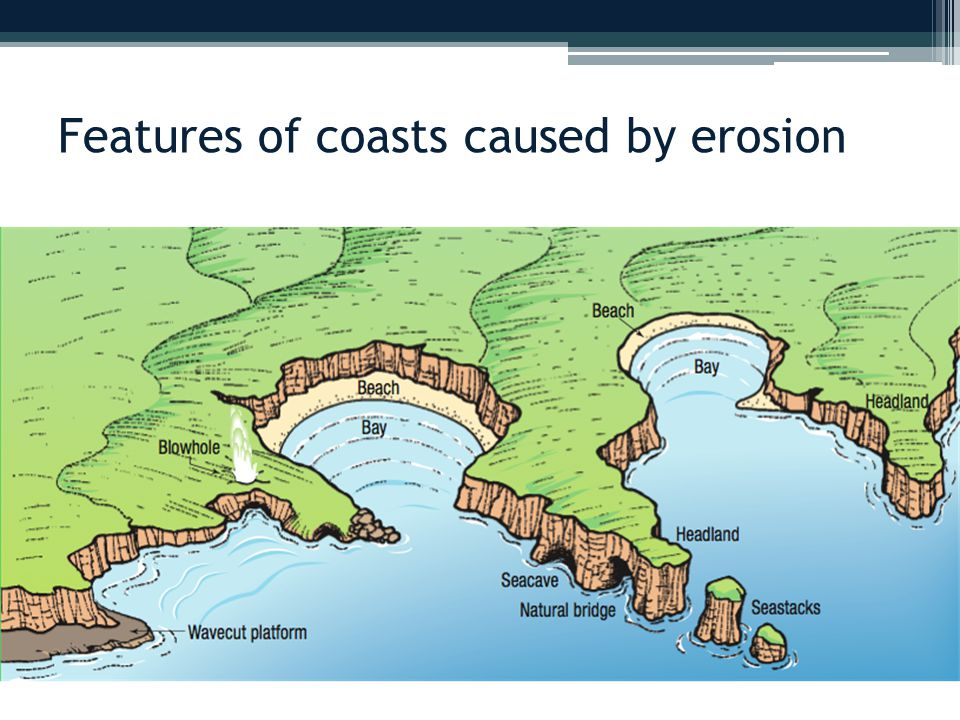 Features of coasts caused by erosion