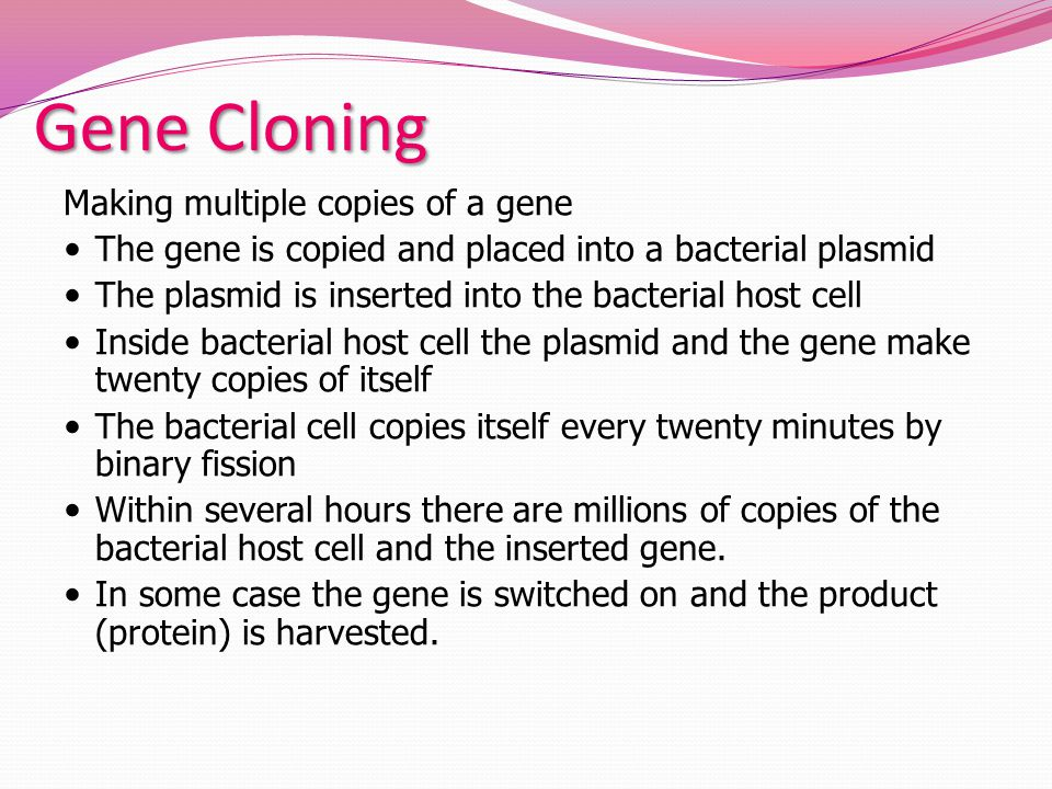 Gene Cloning Making multiple copies of a gene