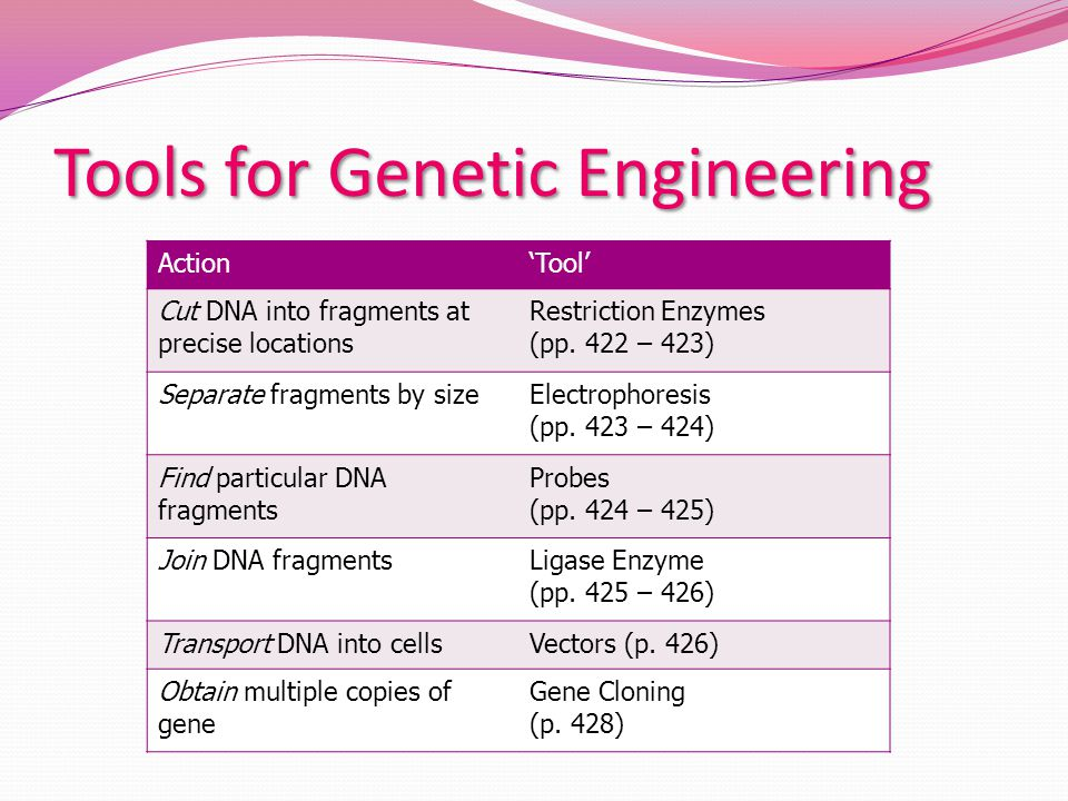 Tools for Genetic Engineering