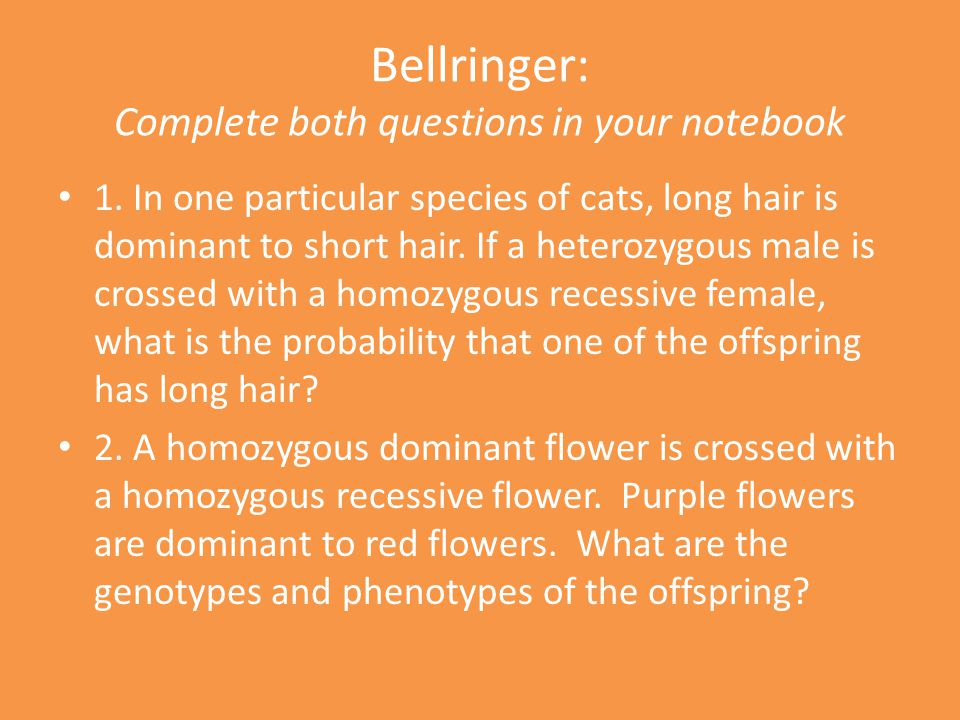Bellringer: Complete both questions in your notebook