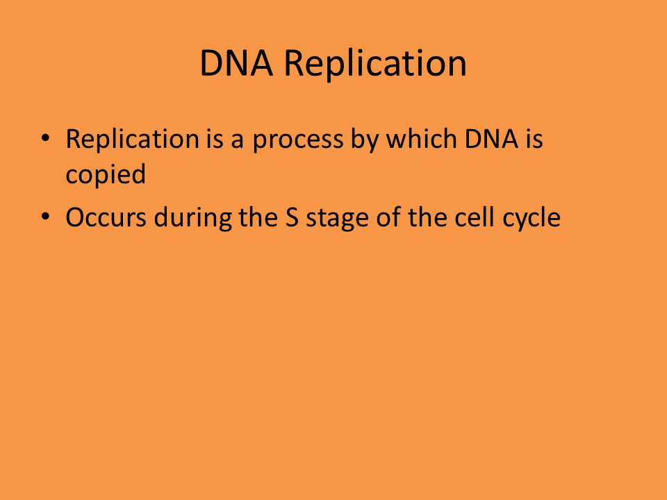 DNA Replication Replication is a process by which DNA is copied
