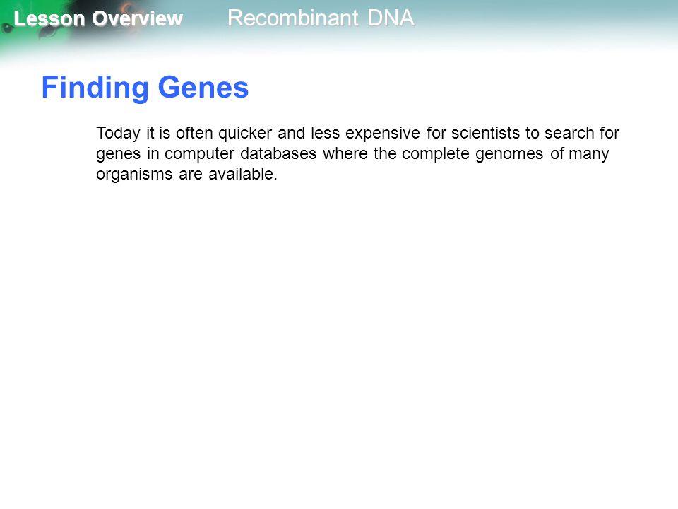Finding Genes