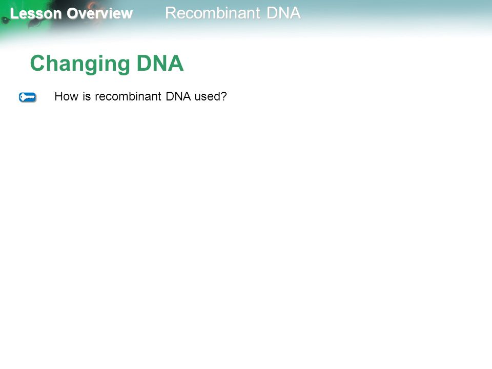 Changing DNA How is recombinant DNA used