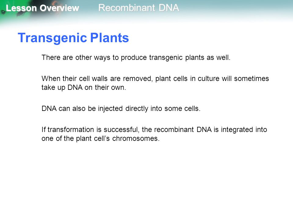 Transgenic Plants There are other ways to produce transgenic plants as well.