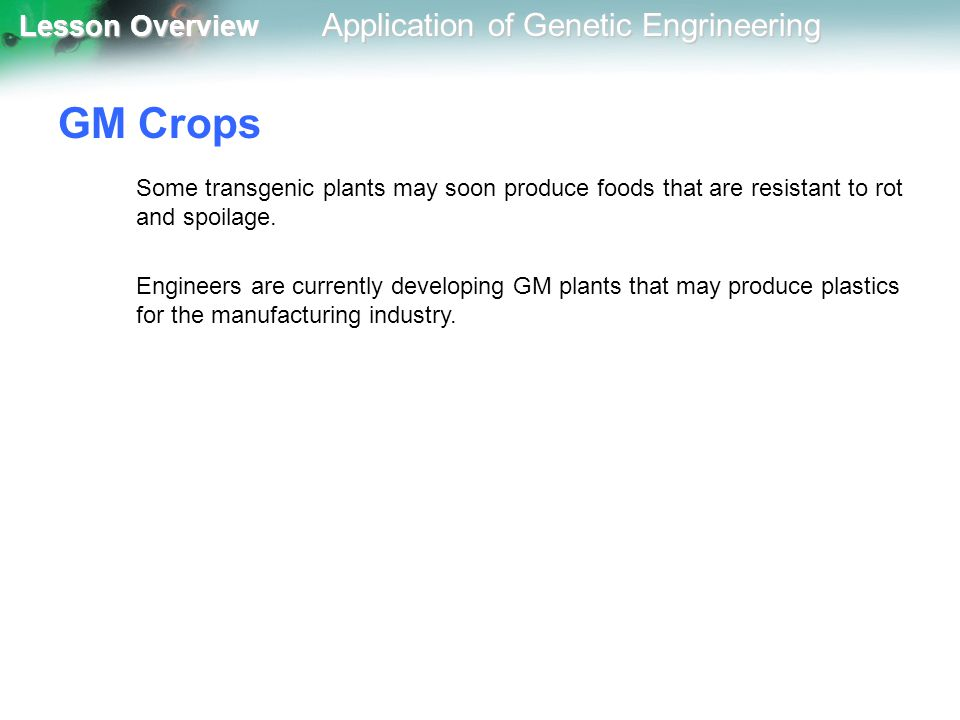 GM Crops Some transgenic plants may soon produce foods that are resistant to rot and spoilage.