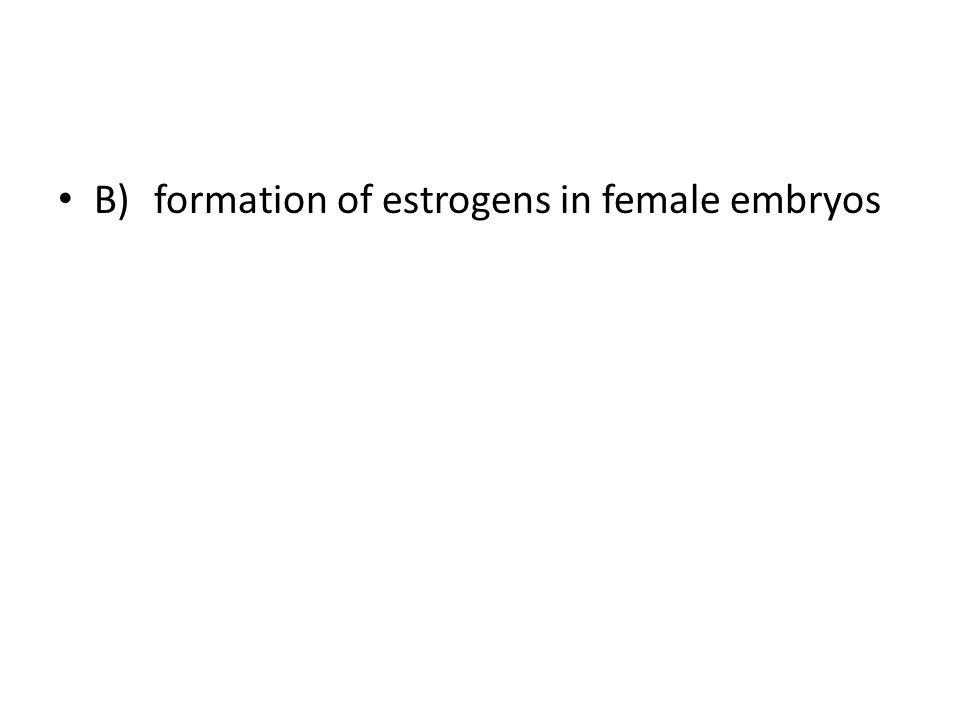B) formation of estrogens in female embryos