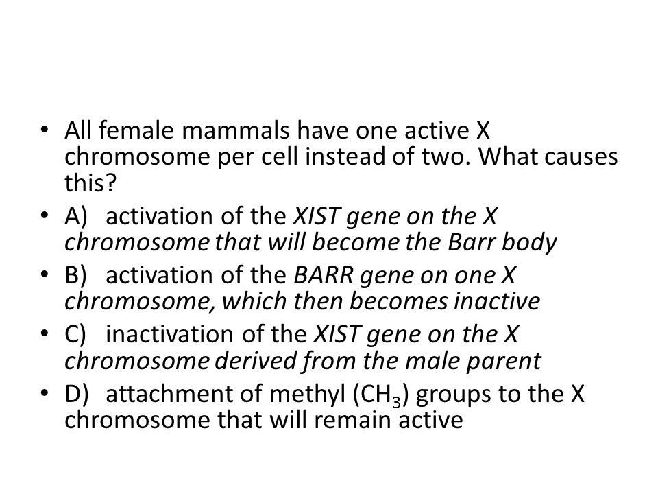 All female mammals have one active X chromosome per cell instead of two. What causes this