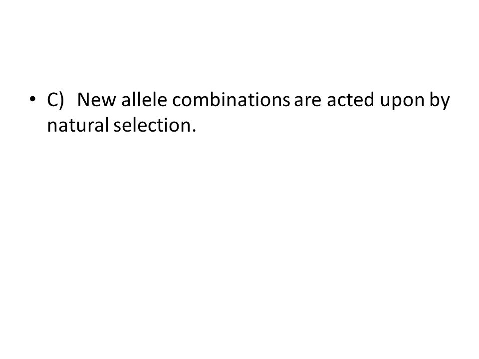 C) New allele combinations are acted upon by natural selection.