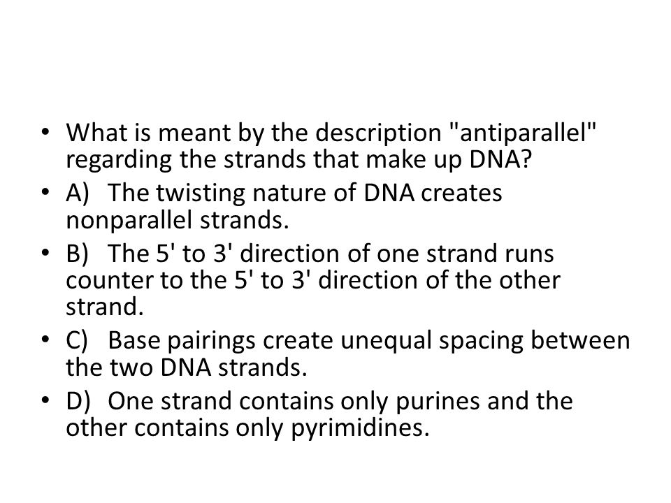 What is meant by the description antiparallel regarding the strands that make up DNA