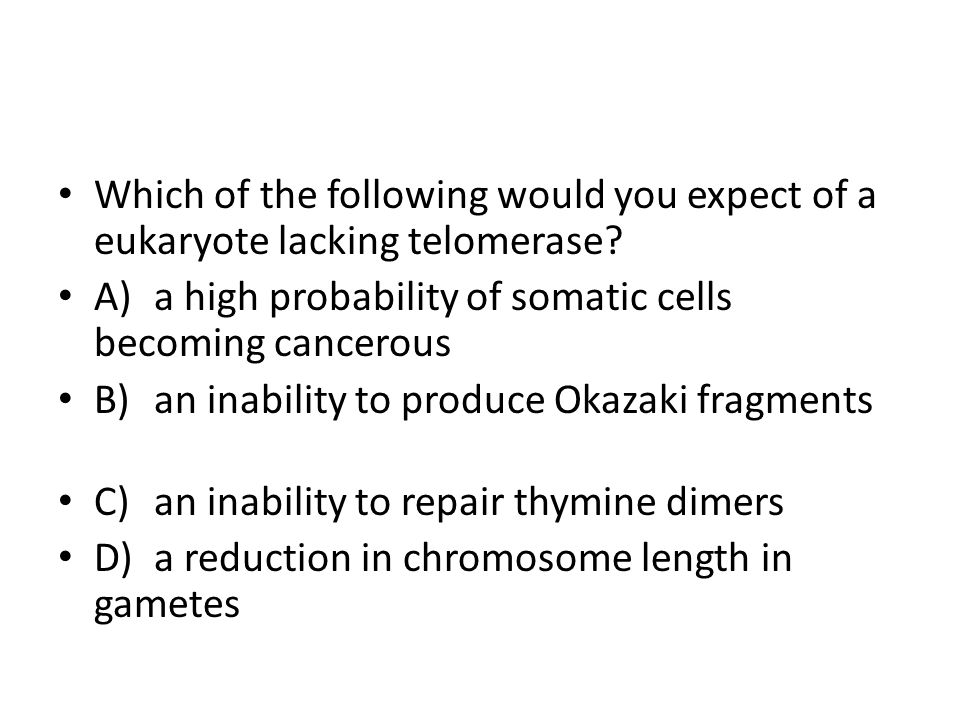 Which of the following would you expect of a eukaryote lacking telomerase