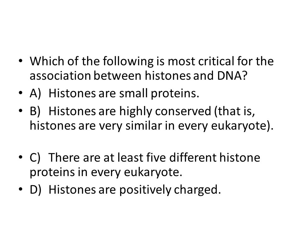 Which of the following is most critical for the association between histones and DNA