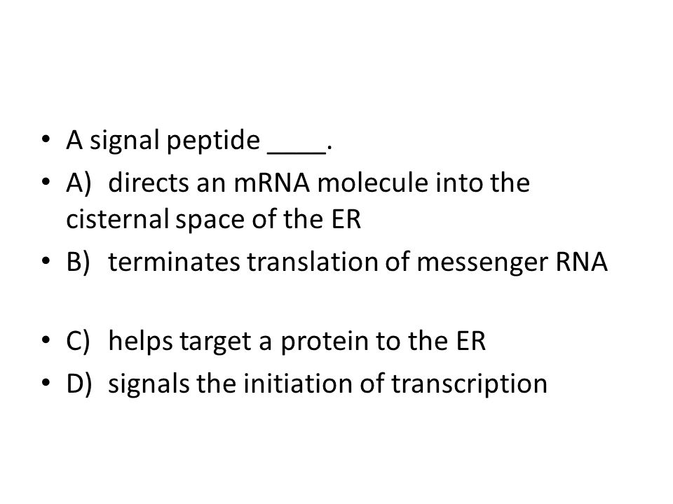 A signal peptide ____. A) directs an mRNA molecule into the cisternal space of the ER. B) terminates translation of messenger RNA.