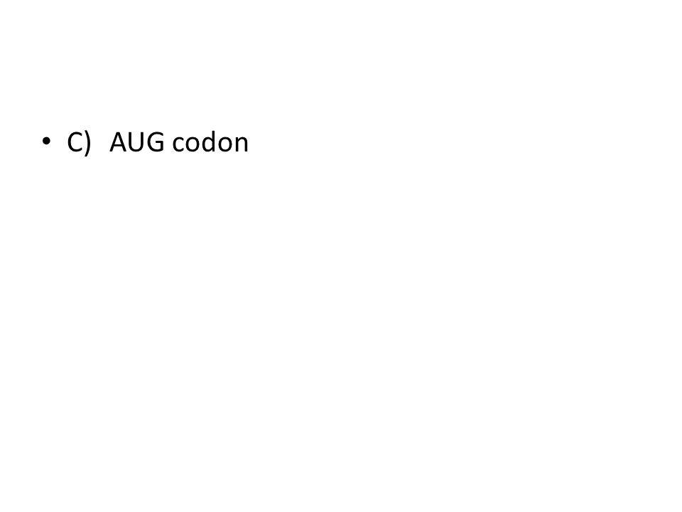 C) AUG codon