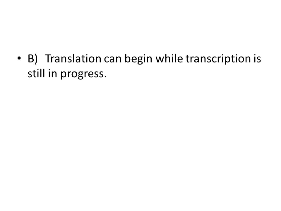 B) Translation can begin while transcription is still in progress.