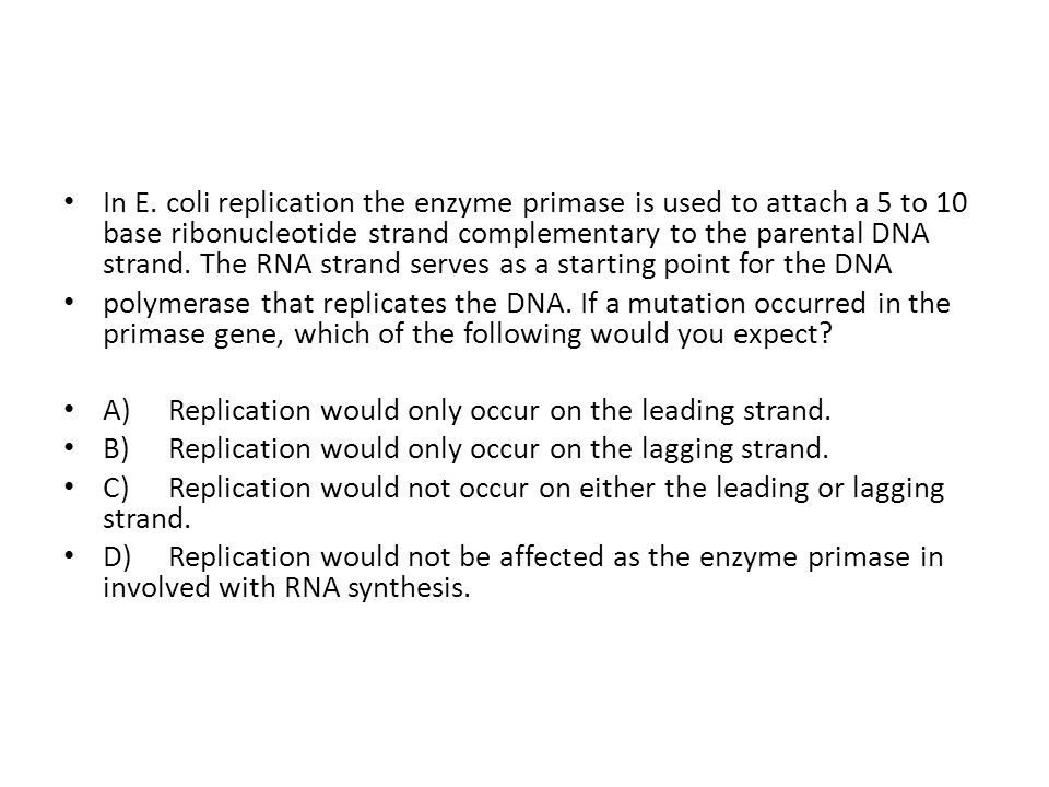 In E. coli replication the enzyme primase is used to attach a 5 to 10 base ribonucleotide strand complementary to the parental DNA strand. The RNA strand serves as a starting point for the DNA