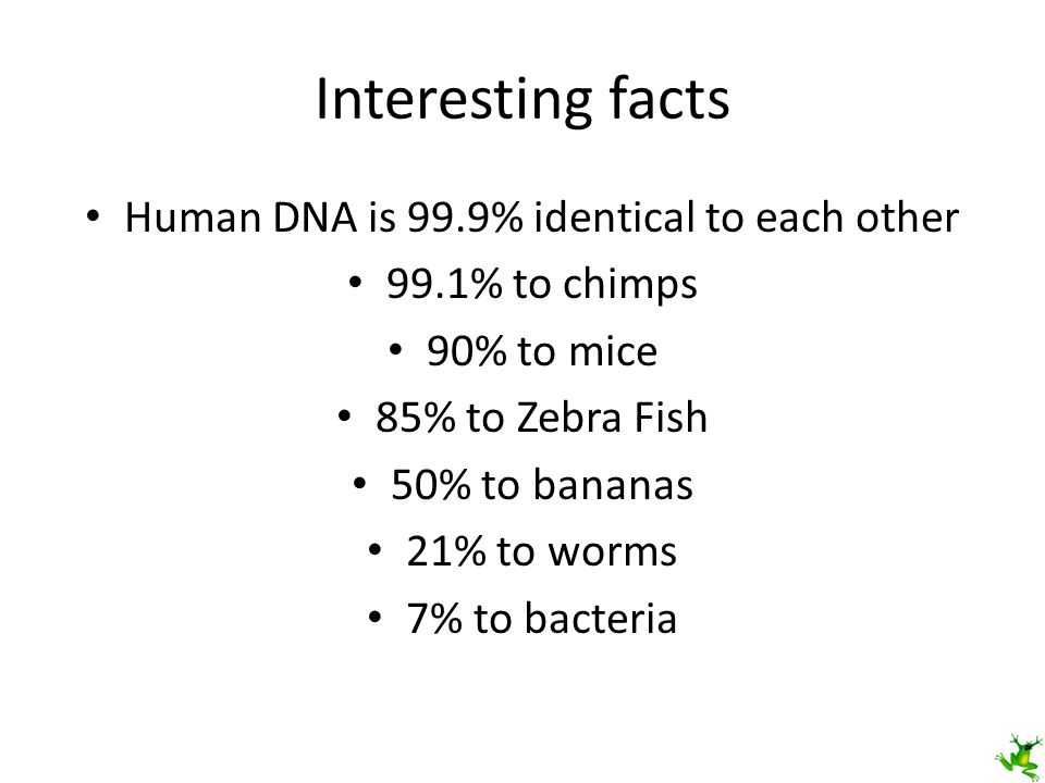 Human DNA is 99.9% identical to each other