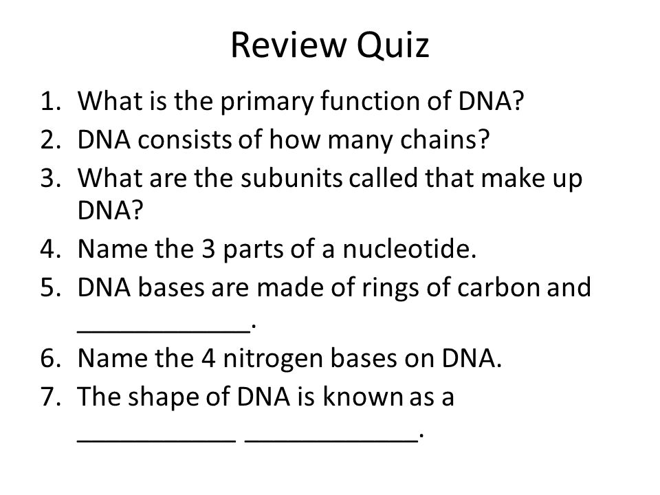 Review Quiz What is the primary function of DNA