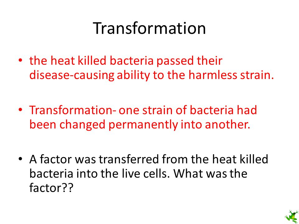 Transformation the heat killed bacteria passed their disease-causing ability to the harmless strain.