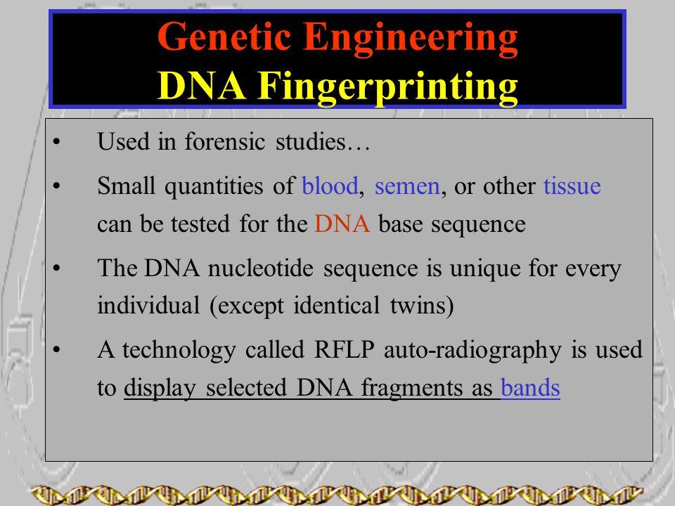 Genetic Engineering DNA Fingerprinting