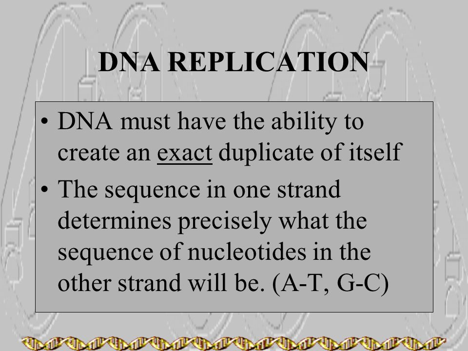 DNA REPLICATION DNA must have the ability to create an exact duplicate of itself.