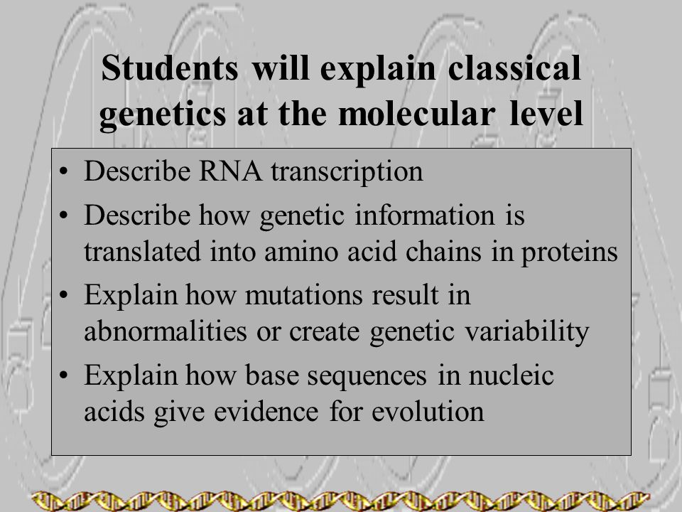 Students will explain classical genetics at the molecular level