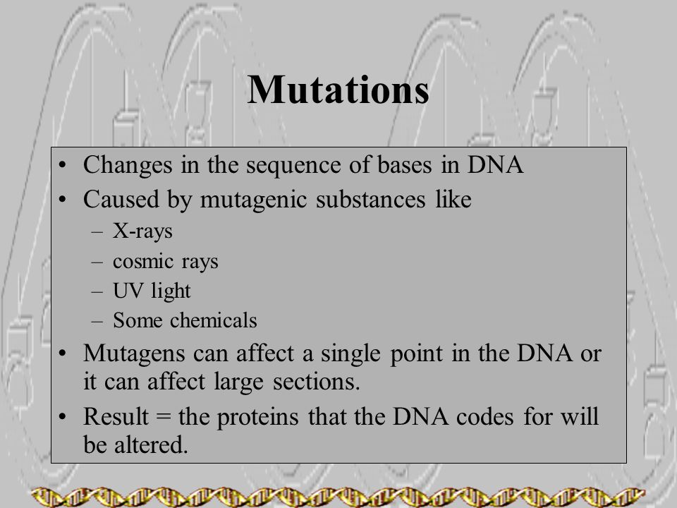 Mutations Changes in the sequence of bases in DNA