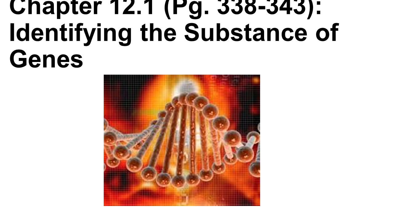 Chapter 12.1 (Pg. 338-343): Identifying the Substance of Genes