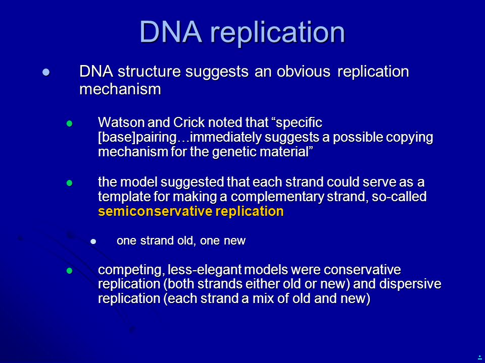 DNA replication DNA structure suggests an obvious replication mechanism.