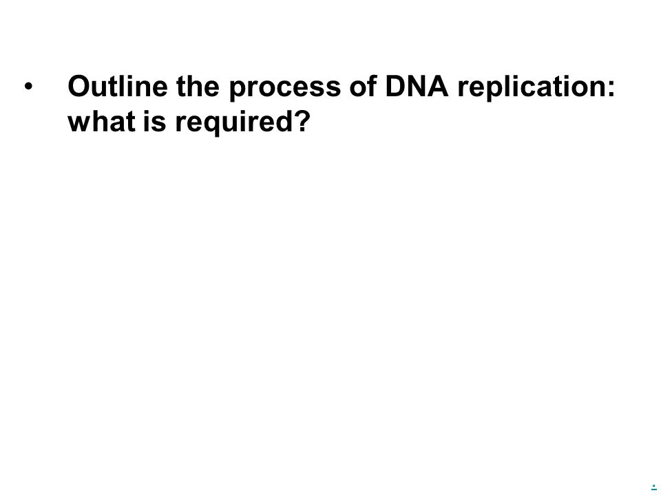 Outline the process of DNA replication: what is required