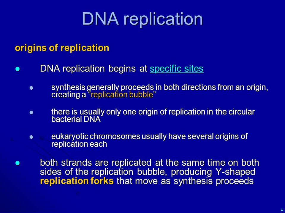 DNA replication origins of replication