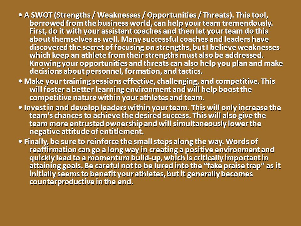 • A SWOT (Strengths / Weaknesses / Opportunities / Threats)