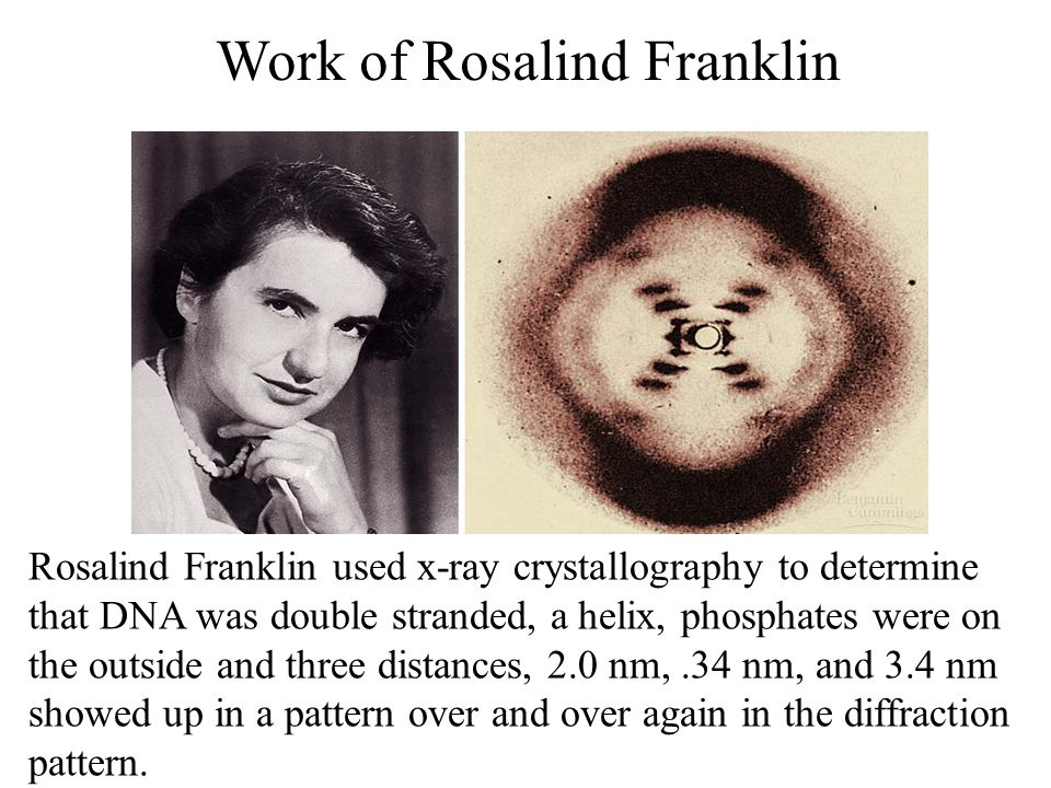 Work of Rosalind Franklin